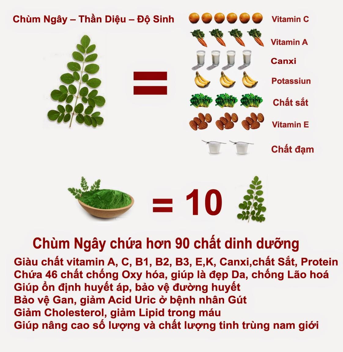 Dinh dưỡng của cây chùm ngây